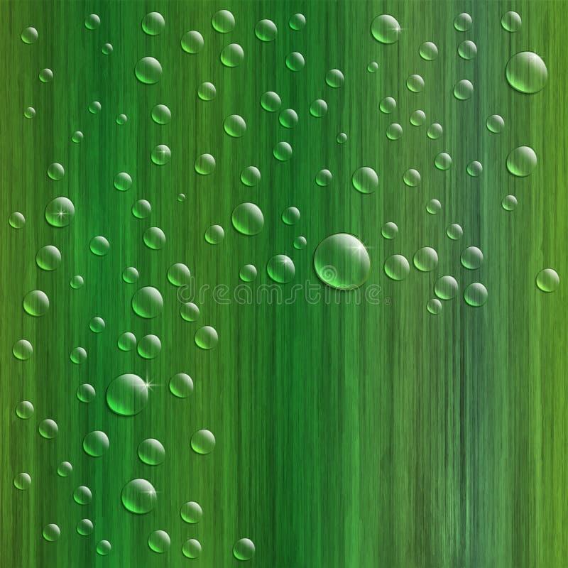 Arrosez les baisses sur l'herbe verte fraîche, illustration réaliste de vecteur illustration de vecteur