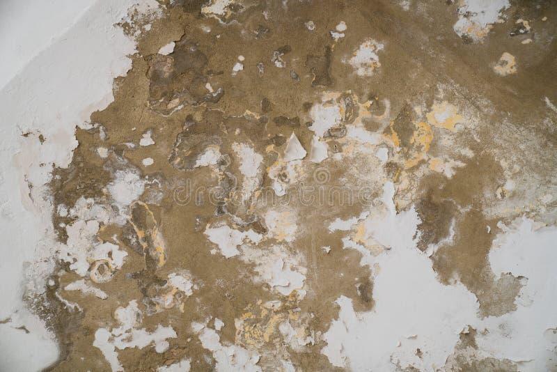 Arrosez les dommages et moulez sur le plafond dans le Mamluks sur l'Esplanade des mosquées à Jérusalem photo stock