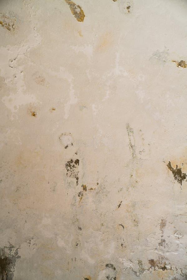 Arrosez les dommages et moulez sur le plafond dans le Mamluks sur l'Esplanade des mosquées à Jérusalem photos stock
