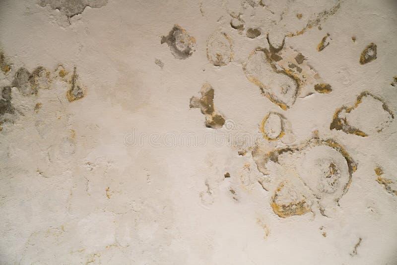 Arrosez les dommages et moulez sur le plafond dans le Mamluks sur l'Esplanade des mosquées à Jérusalem photographie stock