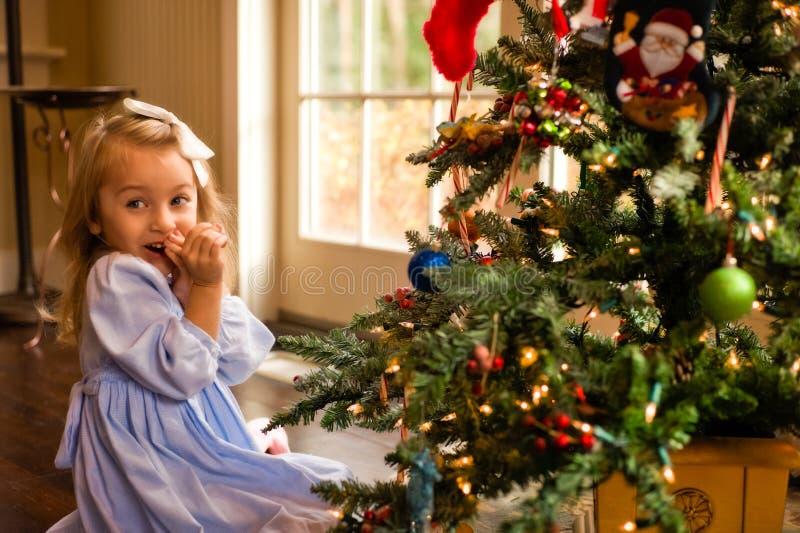 Arrossendo sopra l albero di Natale