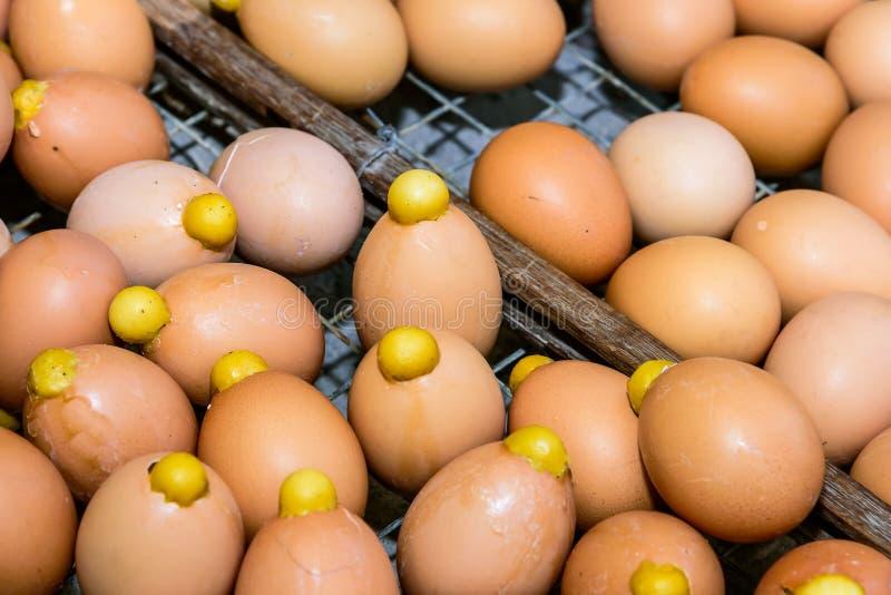 Arrostito caldo dell'uovo immagini stock