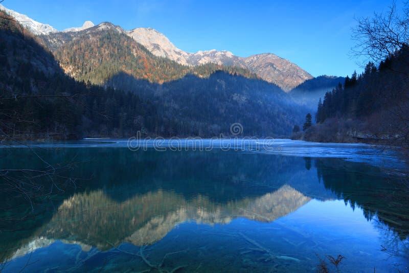 Arrow bamboo jianzhu lake jiuzhai winter stock photos