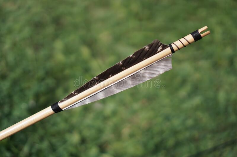Arrow Feather Stock Selective Focus royalty free stock photography