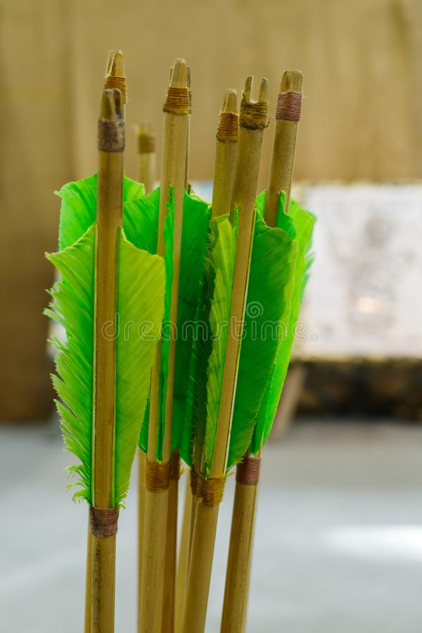 Arrows with natural plumage. Arrows with plumage of green for better flight royalty free stock images