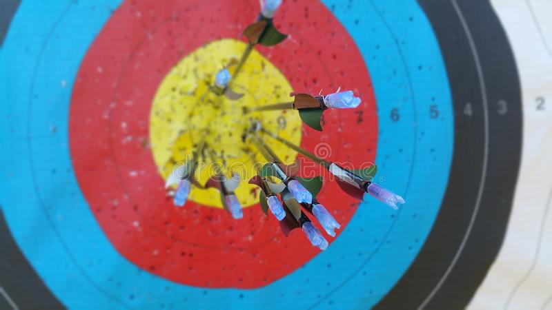Arrows bouchet. Arrows in target royalty free stock photo