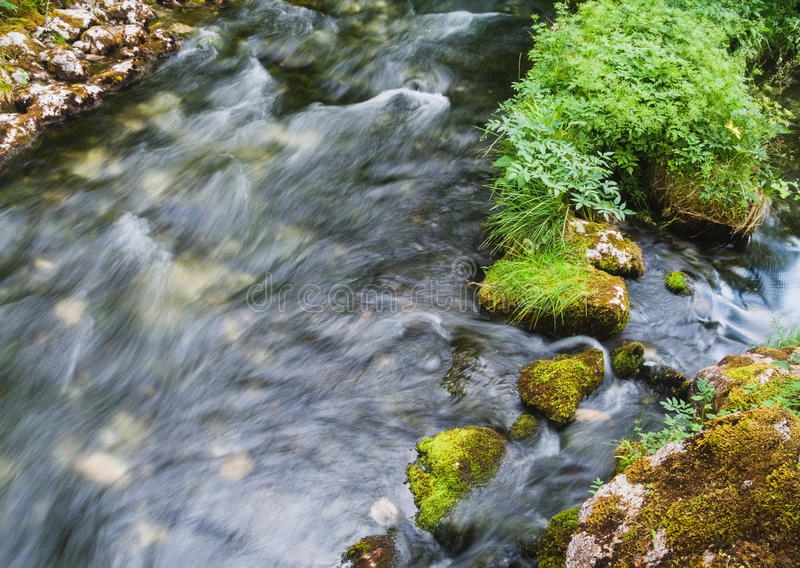 Arroyo alpino hermoso con el musgo verde fresco en las piedras en el parque nacional de Berchtesgaden foto de archivo