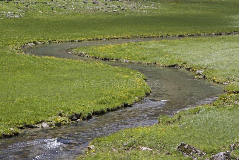 Arroyo idílico del prado en las montañas de Stubai fotografía de archivo libre de regalías