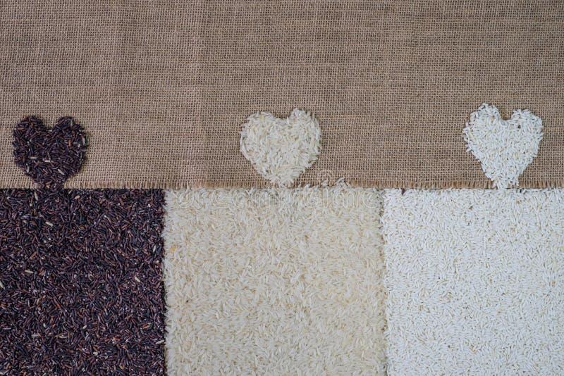 Arroz do amor, alimento saudável, arroz orgânico, arroz misturado, arroz branco do jasmim, baga do arroz, arroz glutinoso no fund foto de stock
