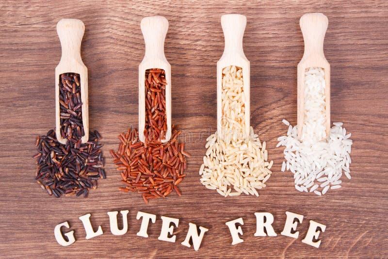 Arroz negro, rojo, marrón y blanco en la cucharada de madera, concepto libre de la nutrición del gluten fotos de archivo libres de regalías