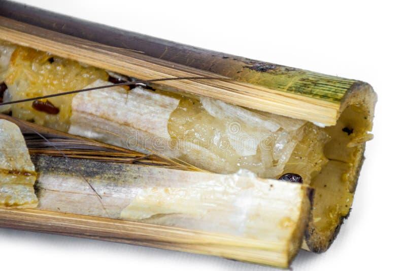 Arroz pegajoso dulce en bambú imagen de archivo