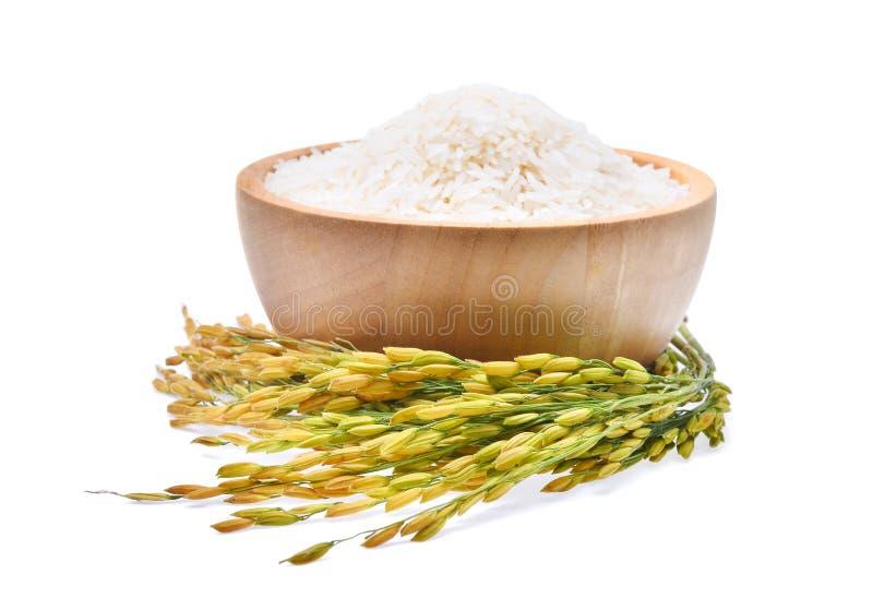 Arroz tailandés del jazmín del arroz blanco en cuenco de madera y arroz sin moler foto de archivo