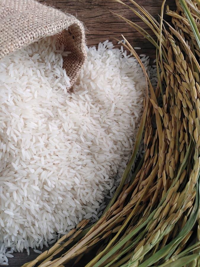 Arroz y arroz tailandeses del jazmín en la tabla de madera fotografía de archivo libre de regalías