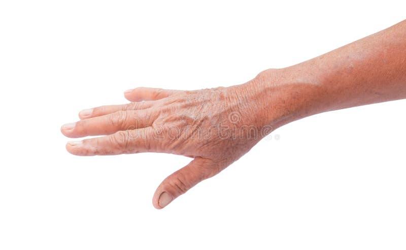 Arrugado en piel de la mano de la mujer mayor, sano y belleza fotografía de archivo