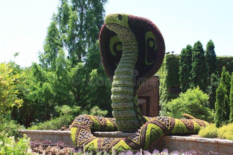 Ars topiaria del serpente fotografia stock libera da diritti