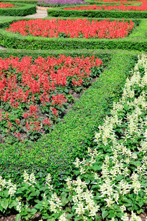 Ars topiaria in un giardino convenzionale inglese fotografia stock