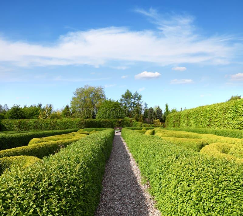 Ars topiaria verde in un giardino tranquillo immagine stock libera da diritti