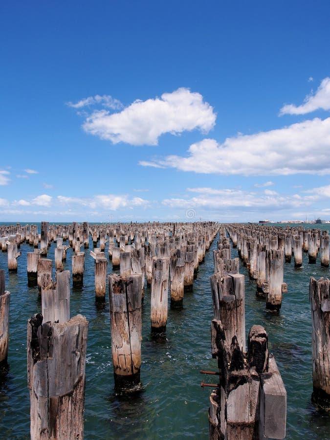Arsenal de tocones viejos en la agua de mar de la bahía de Phillip del puerto en el embarcadero de los príncipes imagen de archivo