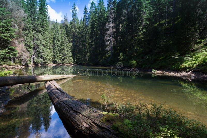 Arshytsya do lago mountain foto de stock royalty free