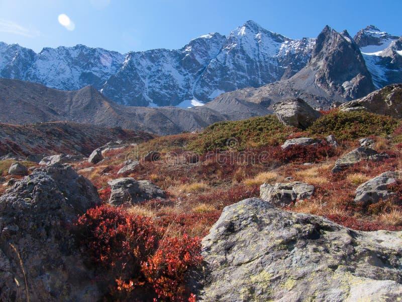 Arsina del ` del passo d, tomba della La, Hautes-Alpes, FRANCIA fotografia stock libera da diritti