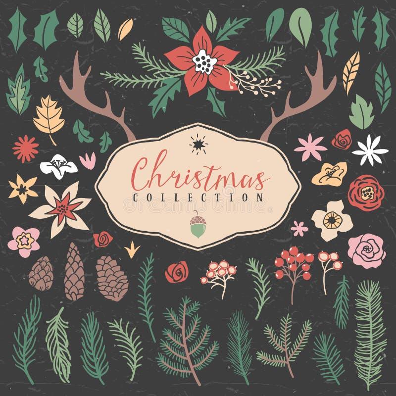 Artículos decorativos de la planta Colección de la Navidad libre illustration