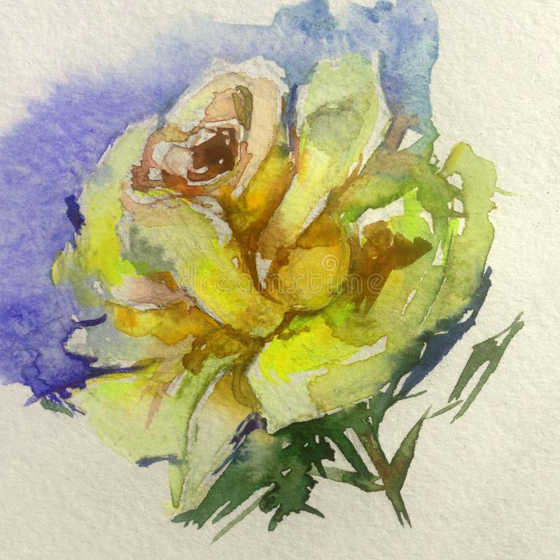Watercolor art background colorful flower tea rose. Art abstract background of tea rose executed with watercolors . warm yellow bright wet wash textured blurred stock illustration
