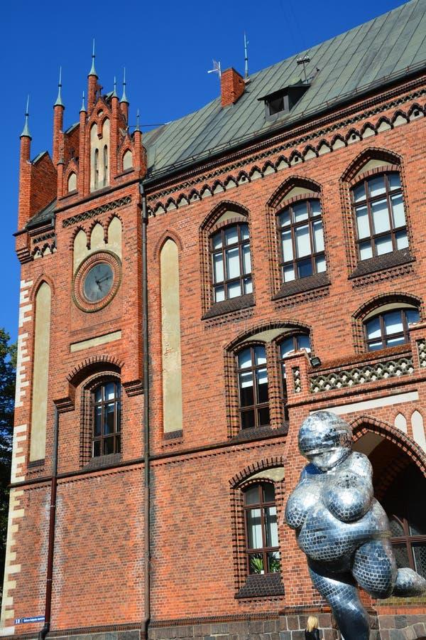 Art Academy de Letónia imagem de stock royalty free