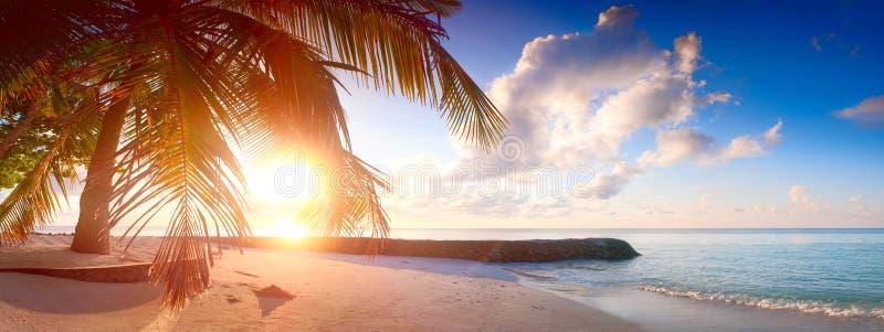 Art Beautiful-zonsopgang over het tropische strand stock afbeeldingen