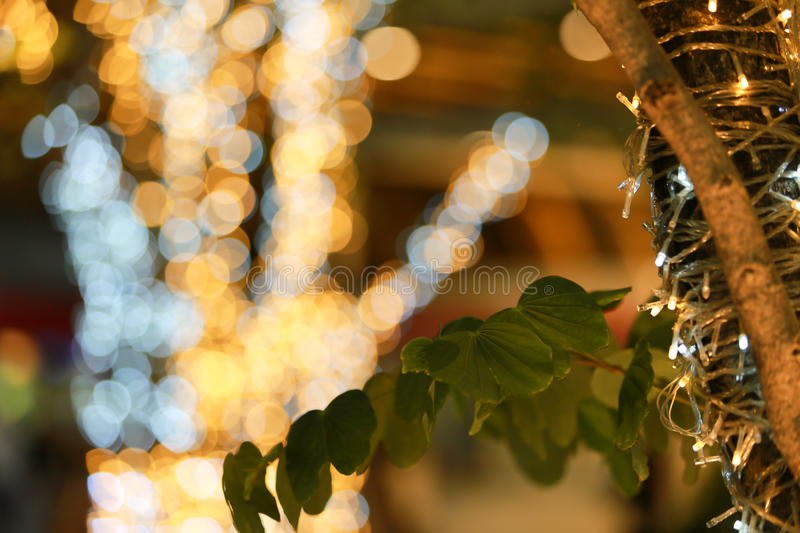 Art of bokeh. If we look good, it`s beautiful. this picture inspiration for me wonderful of bokeh stock photo
