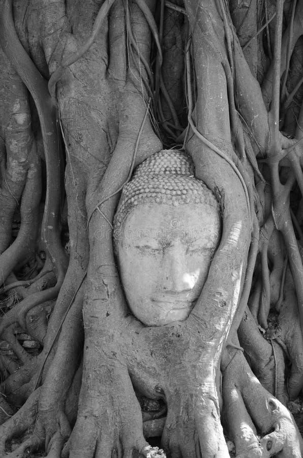 Art Buddha stock foto