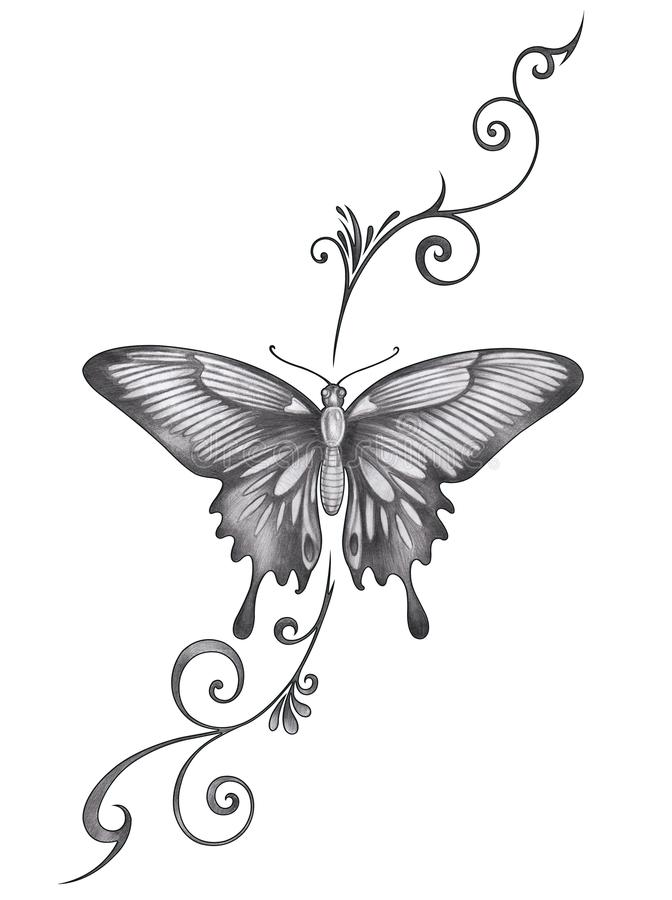 Download art butterfly tattoo stock illustration illustration of background 120043974