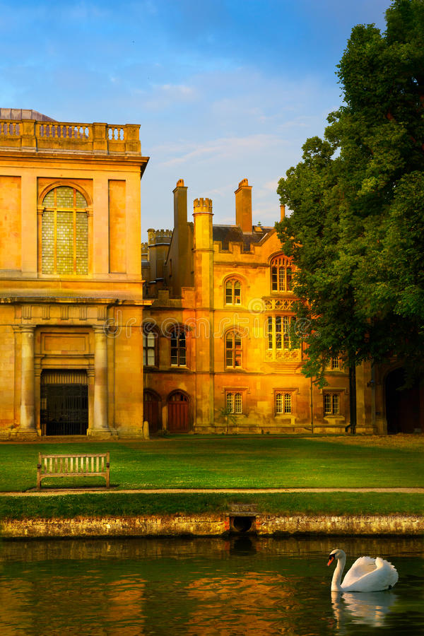 Art Cambridge University College Park royalty-vrije stock afbeelding