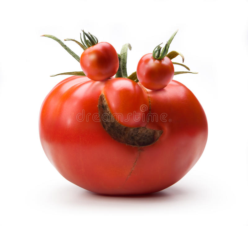 Art cheerful Mr. Tomato humor royalty free stock photo