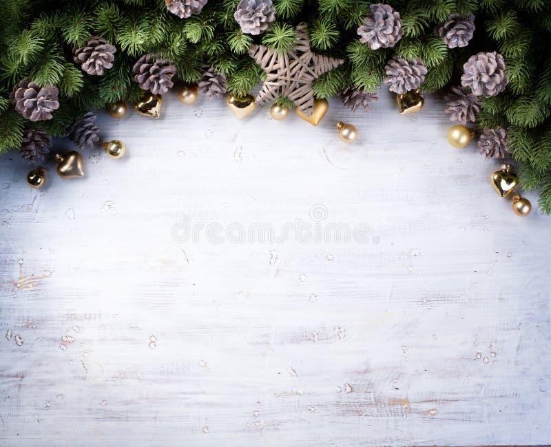 Art Christmas-grens met spartakken en denneappels stock afbeeldingen