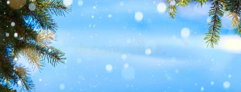Art Christmas trädbakgrund; Blått vinterjullandskap arkivfoton