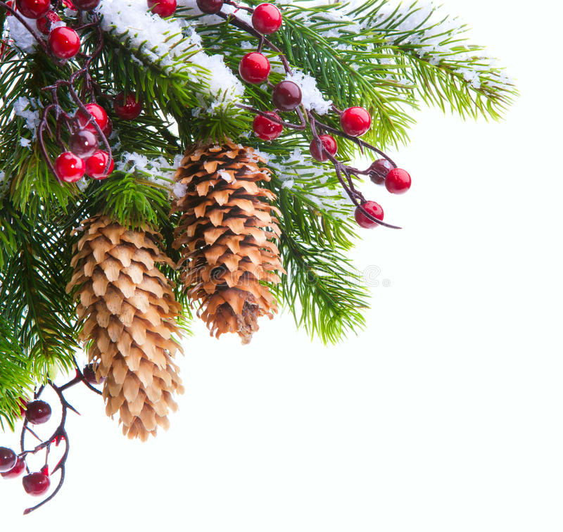 Download Art Christmas Tree Sheltered Snow Stock Photo - Image: 22035640