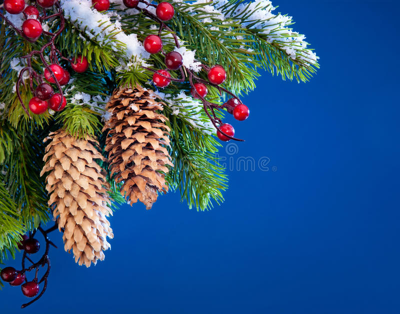 Art Christmas Tree Sheltered Snow Stock Photos