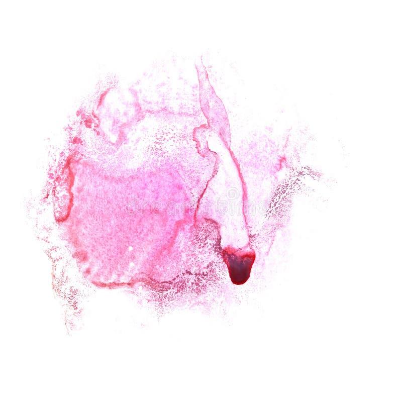 Art Claret, spruzzata acquerella co dell'acquerello dell'inchiostro della chiazza rosa della pittura illustrazione vettoriale