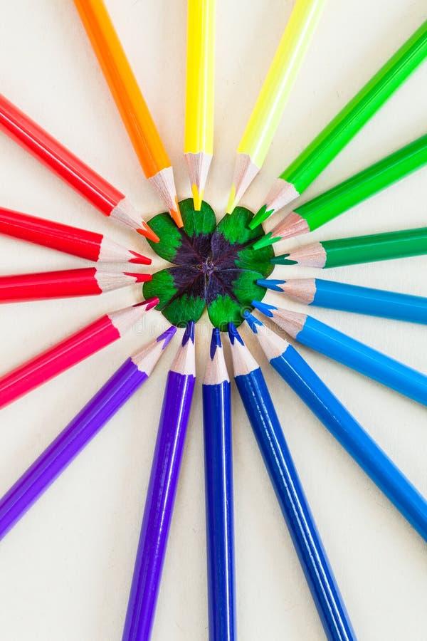 Art coloré de trèfle photographie stock