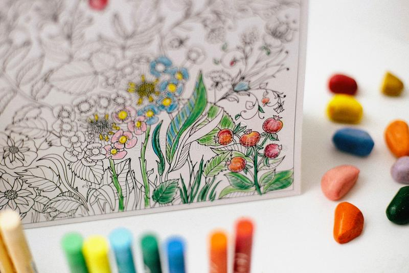 Art And Color Therapy. Anti Stress Adult Coloring Book ...