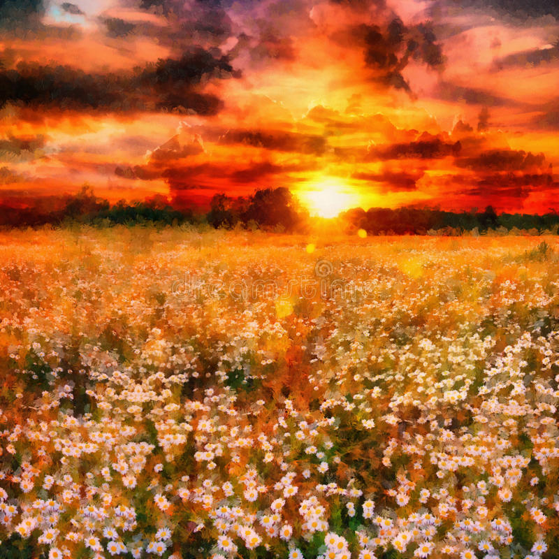 Art daisy meadow. Daisy field in magic sunset light. Oil painting stock photography