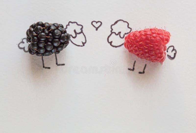Art de nourriture d'amusement pour des enfants - l'agneau de framboise est dans l'amour avec des myrtilles de moutons images libres de droits