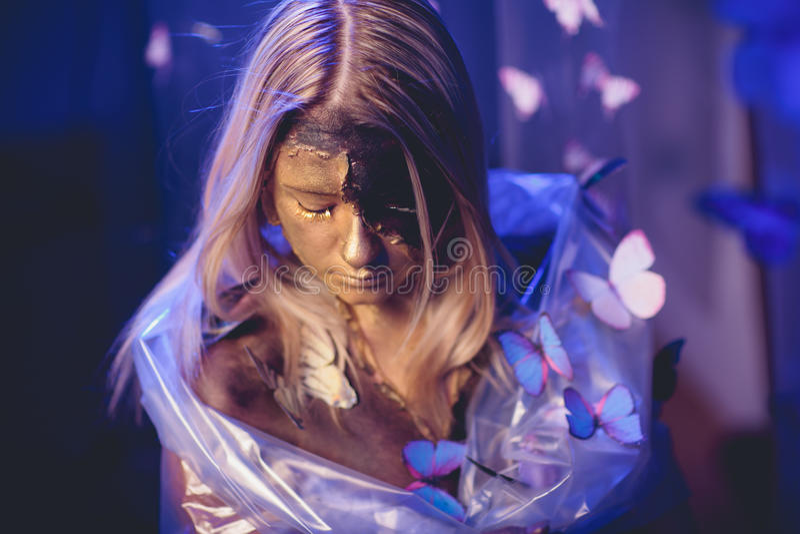 Art de papillon de fille photo libre de droits
