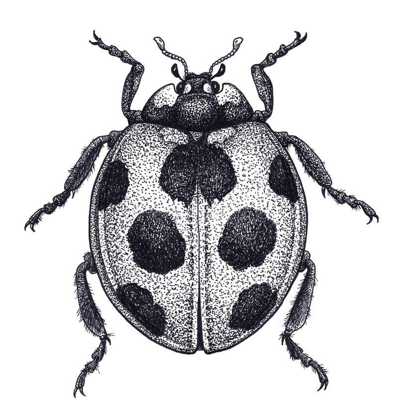 Art de tatouage de coccinelle Illustration de coccinelle Tatouage de scarabée de Madame Tatouage de travail de point Symbole de c illustration libre de droits