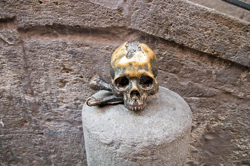 A art deadhead in Italy. This beautiful deadhead can you find in the south of Italy royalty free stock photography