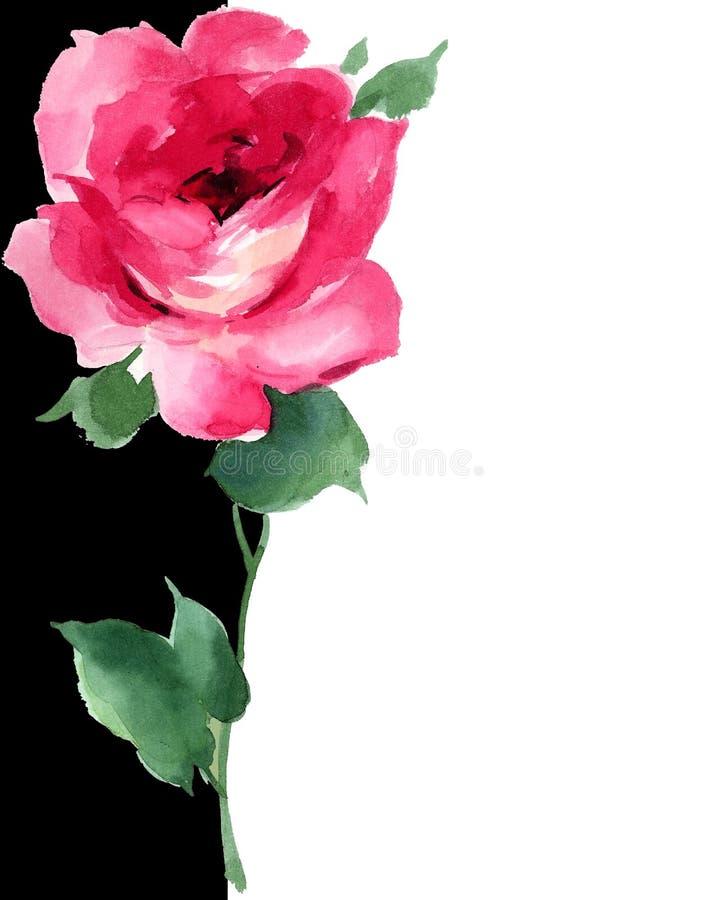 Art deco floreale della pittura della rosa rossa dell'acquerello in bianco e nero illustrazione vettoriale