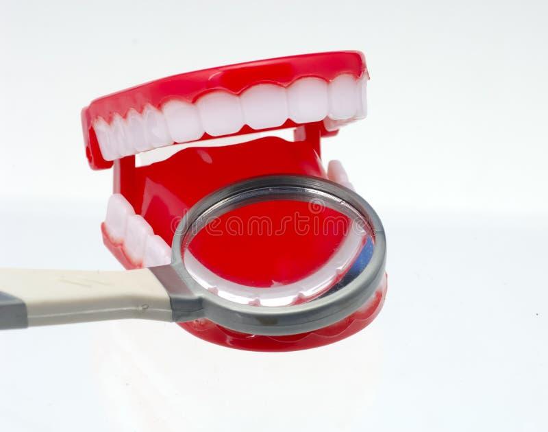Art dentaire photo libre de droits