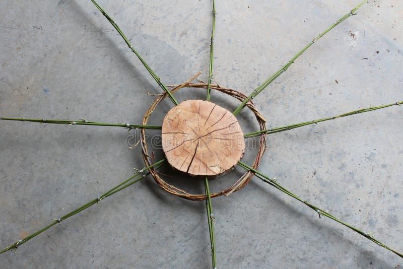 Art en bois de tranche avec le bambou et les vignes tordues, images libres de droits