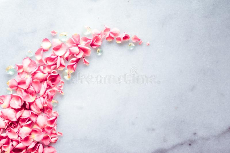 Rose petals on marble stone, floral background stock images