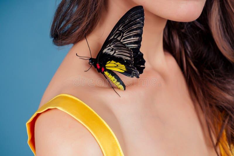 Art Foto Modemodell zeigt eine helle Make-up Schöne junge sexy Frau grüne Augen und lebendes Schmetterling gelb schwarz lizenzfreie stockbilder